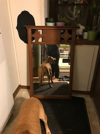 Large sturdy mirror (cute dog not for sale ;) Saint Paul, 55104