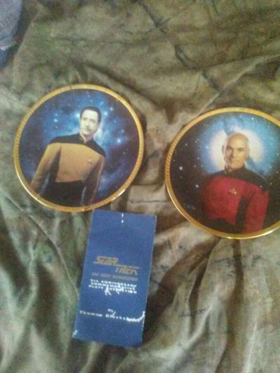 Photo Hamilton collection Star trek the next generation collectible plates