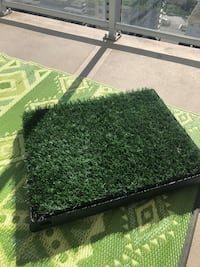 Puppy faux grass training pad New Westminster, V3M 1X6