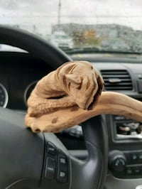 Wooden hand carved cane Eastern Passage, B3G 1B9