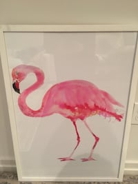 Beautiful Flamingo Watercolor Print Washington, 20003
