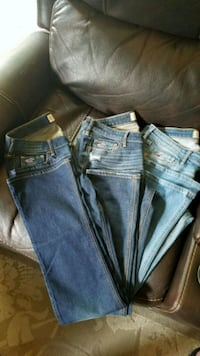 Hollister Jeans Gloucester County