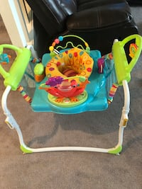 Fisher-Price First Steps Jumperoo Maple Ridge, V2X 0R3