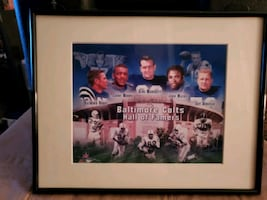 Baltimore colts photo