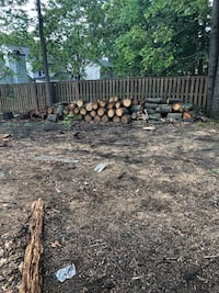 Free Fire Wood Pick Up Only  Hanover, 21076