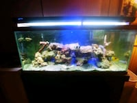 black framed clear glass fish tank 913 mi