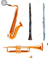 Private MUSIC LESSONS on Clarinet, Saxophone, Trumpet and Flute