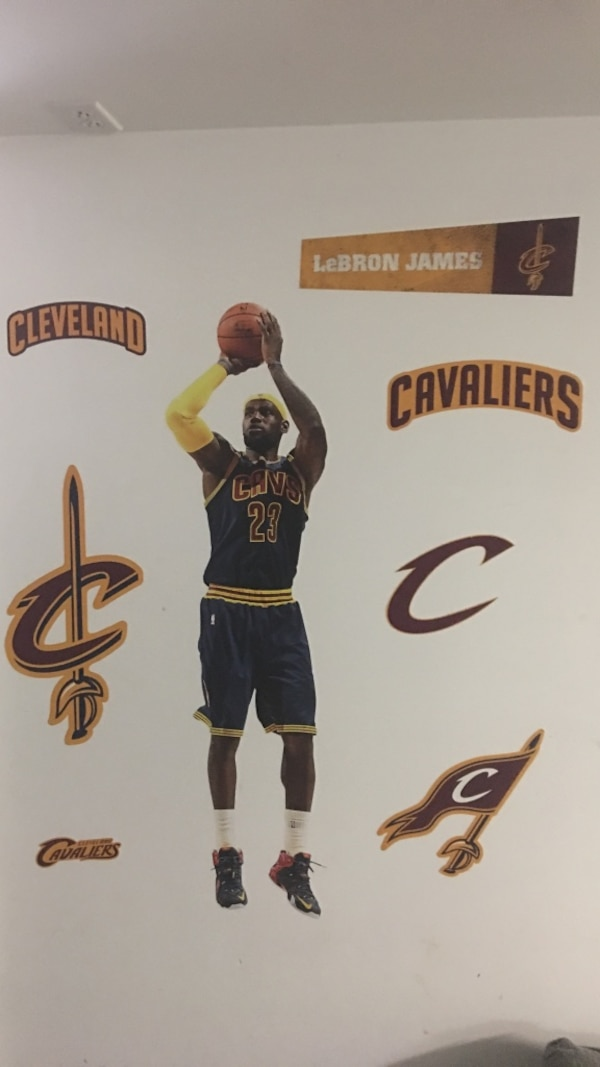 0a4352cb602b Used LeBron James fathead jr for sale in Blue Bell - letgo