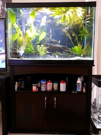 Fish Tank 65 Gallon , Aquarium