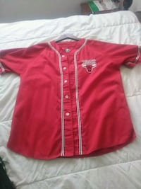 Vintage Chicago bulls baseball style jersey