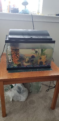 rectangular black framed fish tank LAUREL