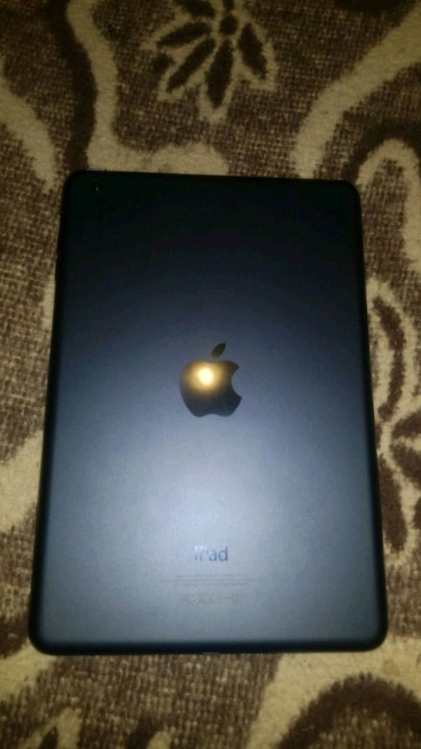 iPad mini 16gig with case and charger  0