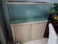 White wooden framed glass fish tank Austin, 78748