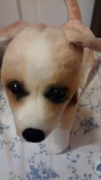 Toy Stuffed Dog, Realistic Looking, Not Real Waterbury, 06710