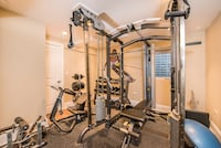 Hoist Complete GYM set .  Top of line Wilmette, 60091