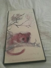 Field mouse  picture