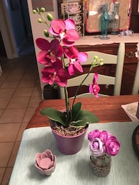 Purple orchids, a nosegay and a lotus flower. Laguna Woods, 92637