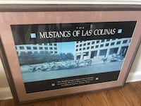 Nice framed picture the Mustangs of las Colimas size is 43 x 32 Orchard Hills, 21742
