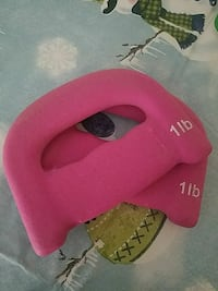 Set of 2 pink 1 lb hand weights Lancaster, 17602
