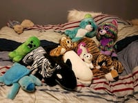 Multiple stuff animals   Brampton, L6V 3T9