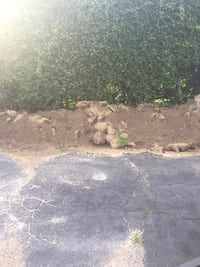 Free clean dirt mixed with sod Mississauga, L5G 2S6