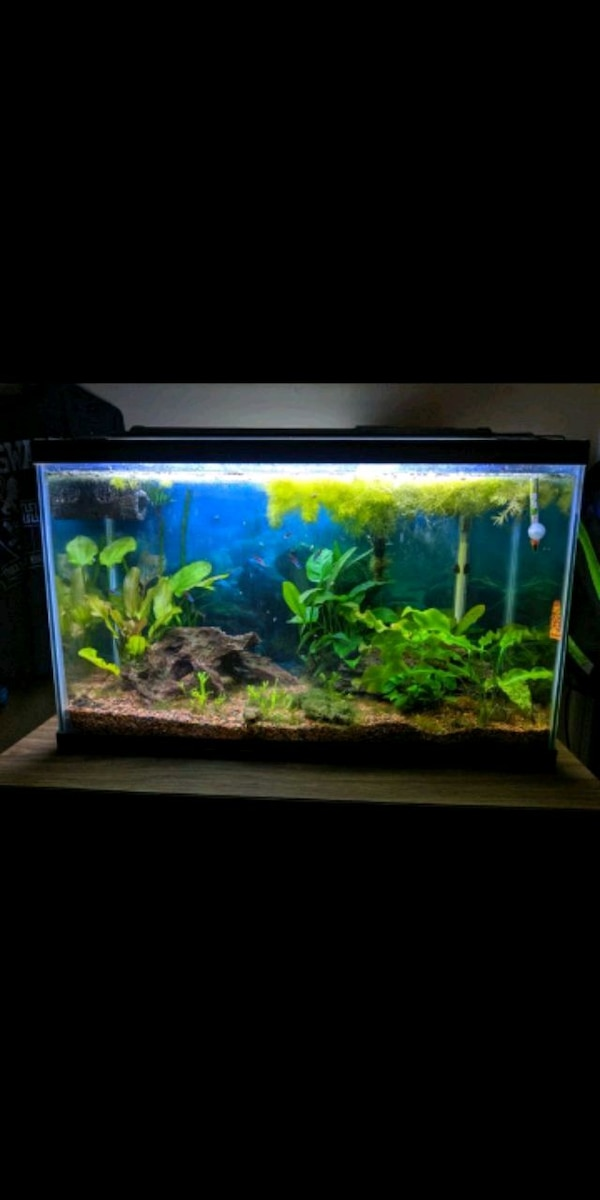 Used Fish Tank For Sale In Smyrna Letgo
