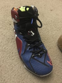 "lebrons 12 ""what the"" Hagerstown, 21740"