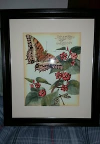 Whimsical Butterfly prints from Ballard Designs Tampa, 33609