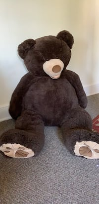 Brown Bear from Costco