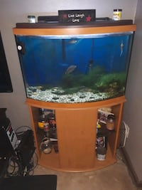 FREE Tank and Stand- Please Read