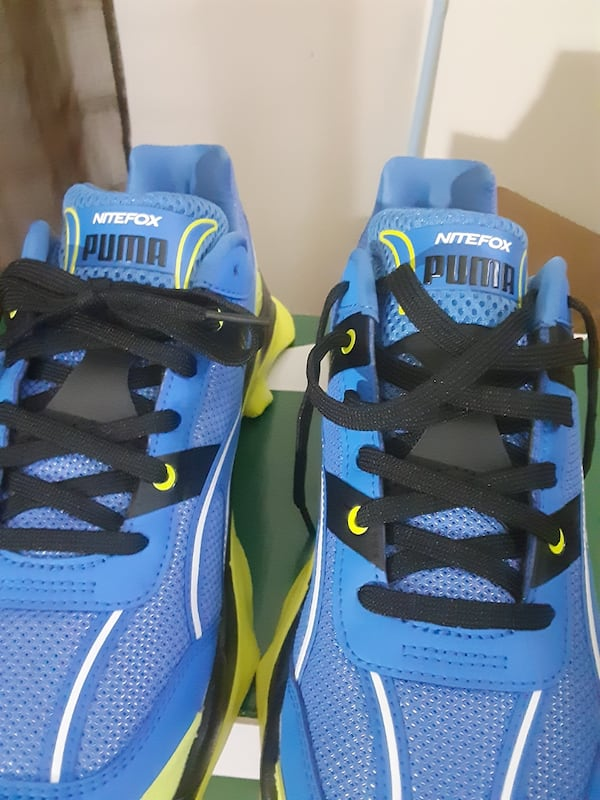 Tennis shoes home of night Fox Edition size 11 brand new deb74297-b645-4ae7-9e81-51c3de86933a