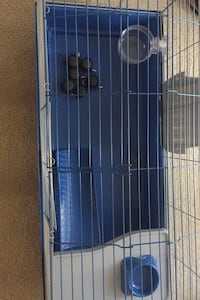 Small pet cage Waldorf, 20601