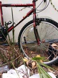 black and red hardtail mountain bike Torrance, 90503