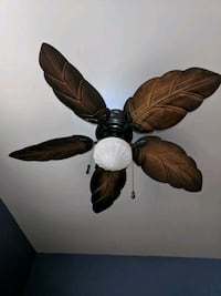 Ceiling fan Harpers Ferry, 25425
