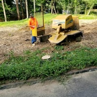 Southern Stump Grinding llc  Woodstock