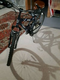 21 speed bicycle  3715 km