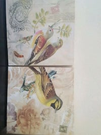 Bird Pictures Set of Two Los Angeles, 91406