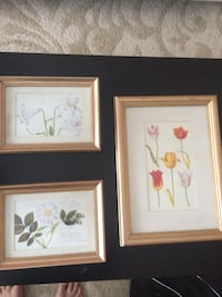 Three white and multicolored flower paintings and brown wooden frames Ottawa, K2G