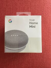 Google mini Chesapeake, 23320