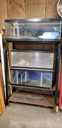 3 fish tanks with stand