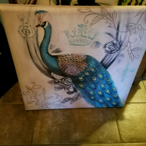 Used Peacock Canvas For Sale In Louisburg Letgo