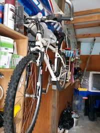 Raleigh 20 Speed  Candler, 28715