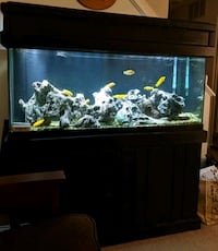 75 galllon fish tank with 20 gallon sump pump  Olney, 20832