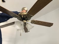 Brown 5-bladed ceiling fan Canton, 44708