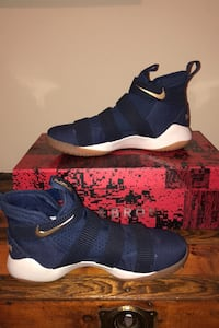 Lebron James b-ball sneakers Vienna, 22180