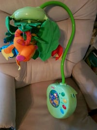 baby's green and white Fisher-Price bouncer Mississauga, L4X 1B1