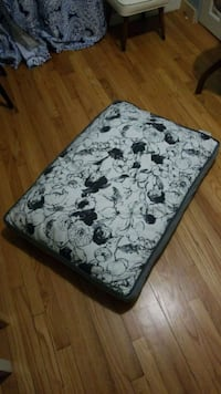 Dog bed turned meditation space cushion Grand Rapids, 49507