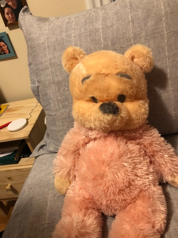 Used Winnie the Pooh Bear for sale in New Rochelle - letgo ee6f92c1469d