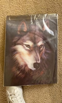 Hologram wolf picture.