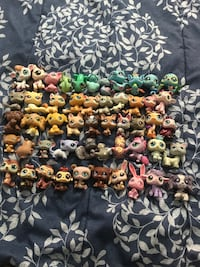 50 Littlest Pet Shop - Rare and Retired Montverde, 34756